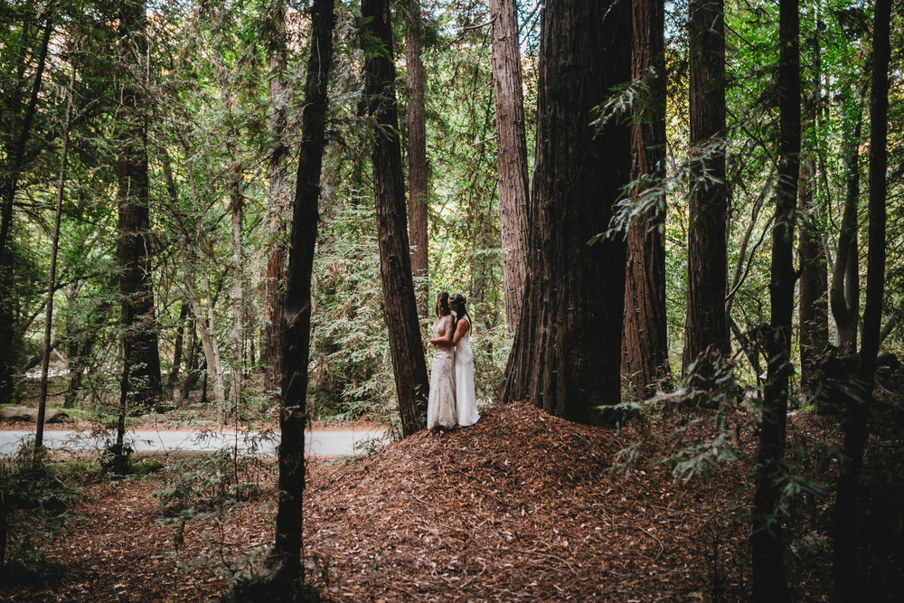 Meaghan + Jen -- An Intimate Big Sur Elopement -- Whitney Justesen Photography-85.jpg