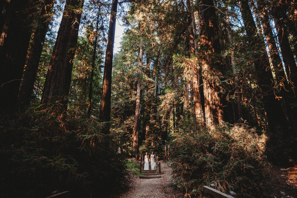 Meaghan + Jen -- An Intimate Big Sur Elopement -- Whitney Justesen Photography-126.jpg