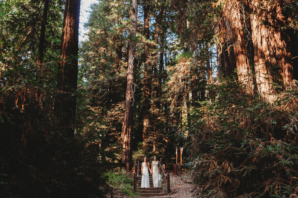 Meaghan + Jen -- An Intimate Big Sur Elopement -- Whitney Justesen Photography-127.jpg
