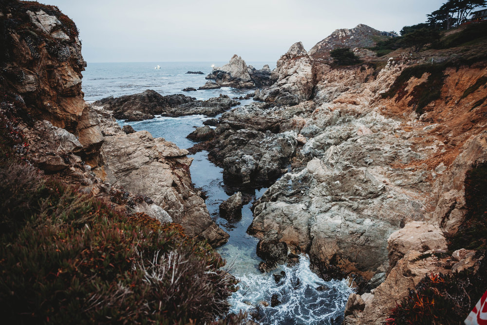 Meaghan + Jen -- An Intimate Big Sur Elopement -- Whitney Justesen Photography-281.jpg