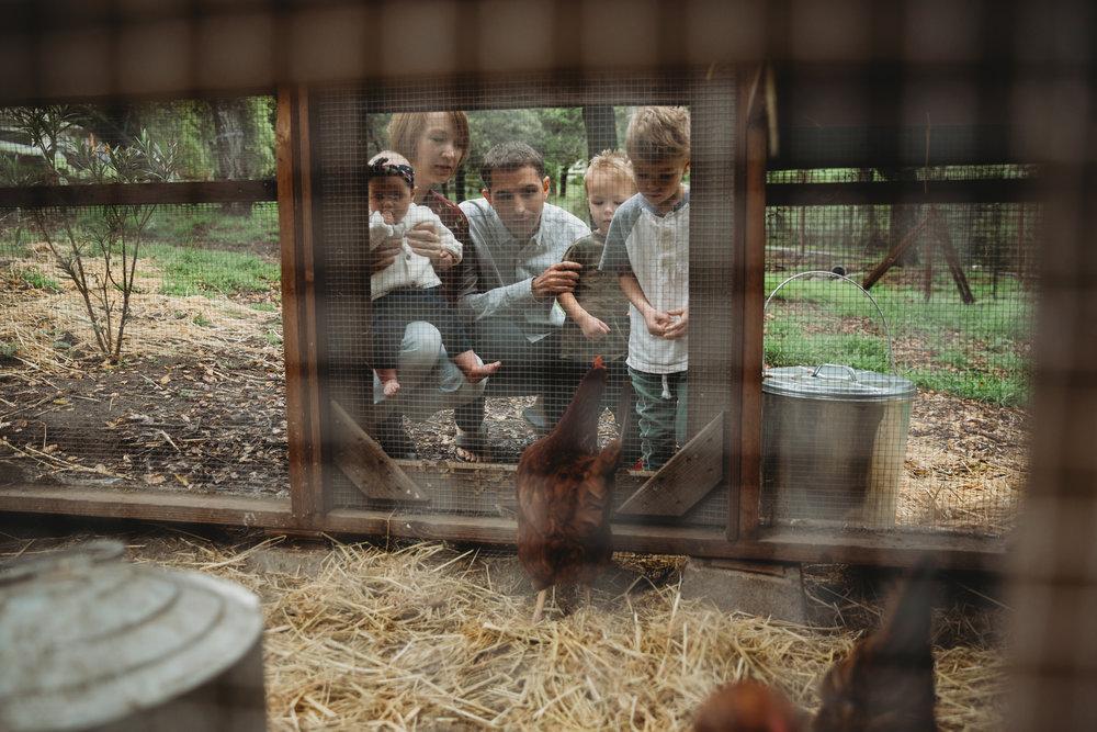 The Elliott's -- Santa Cruz Family Session -- Whitney Justesen Photography-79.jpg