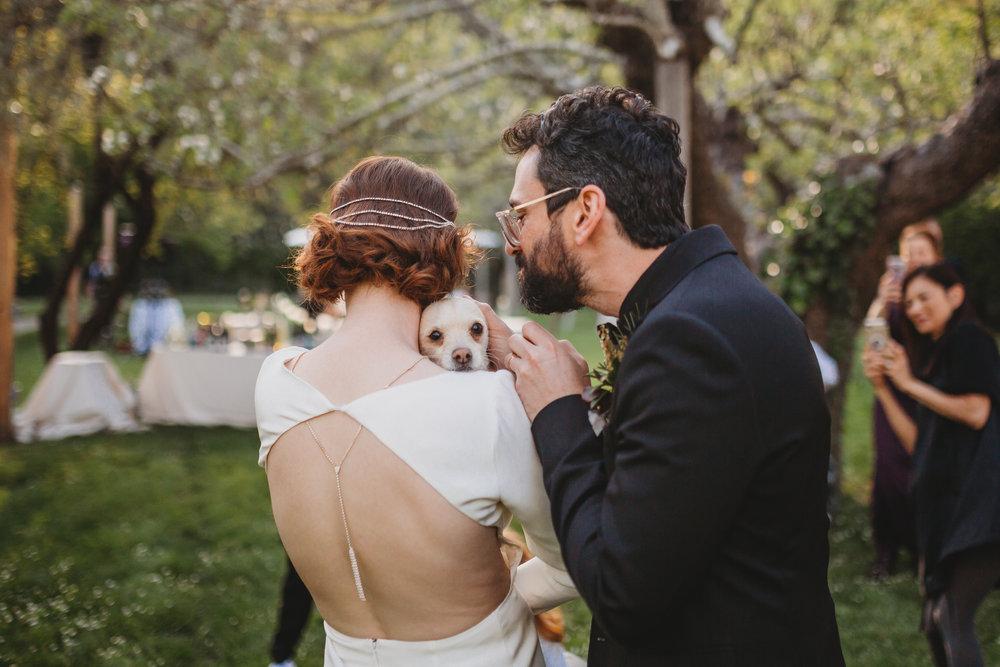 Ben + Alisa -- Dawn Ranch Wedding -- Whitney Justesen Photography-773.jpg