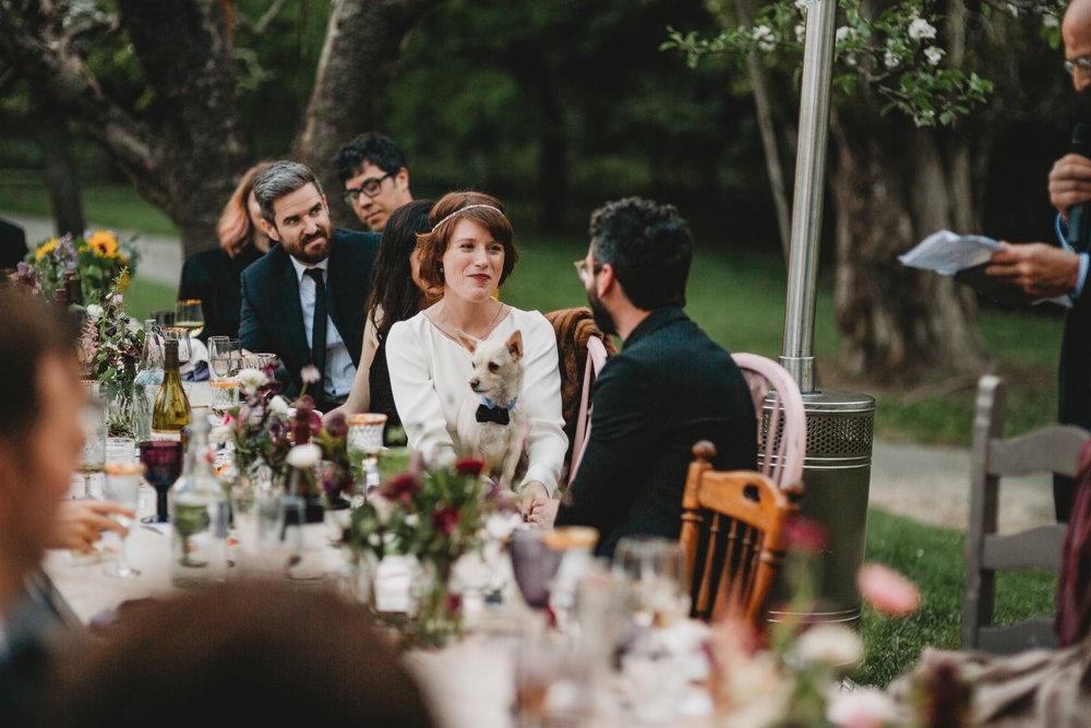 Ben + Alisa -- Dawn Ranch Wedding -- Whitney Justesen Photography-899.jpg