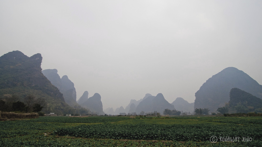 Southern Coutryside Vietnam.jpg
