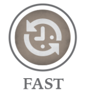 homepage_icons fast.png