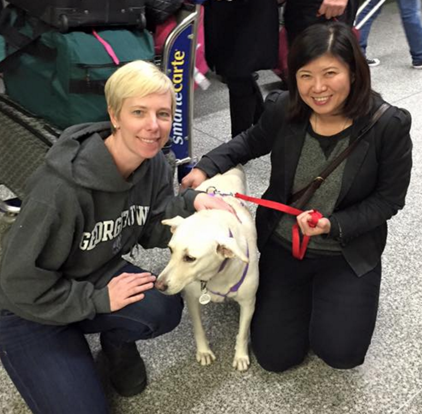 Diana's org is constantly looking for the traveler who flys between Taiwan and US to help so that they can transport the animal as flight carry-on.