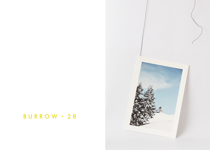 Burrow28 Up High On a Hill Print / Renae Smith