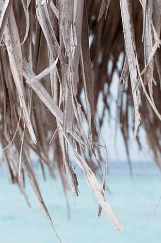Maldives, 2014 / © Renae Smith