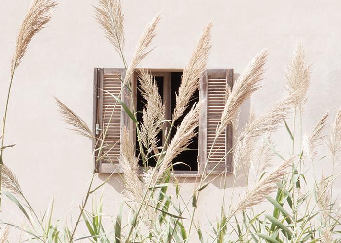 Italy 2015 / Renae Smith
