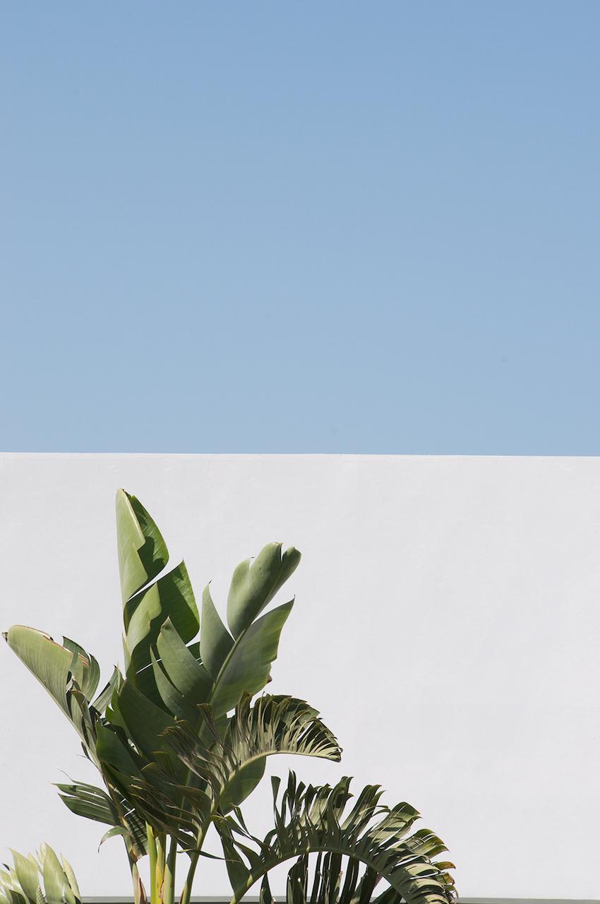 Casa Cook Hotel, Rhodes (details) © Renae Smith