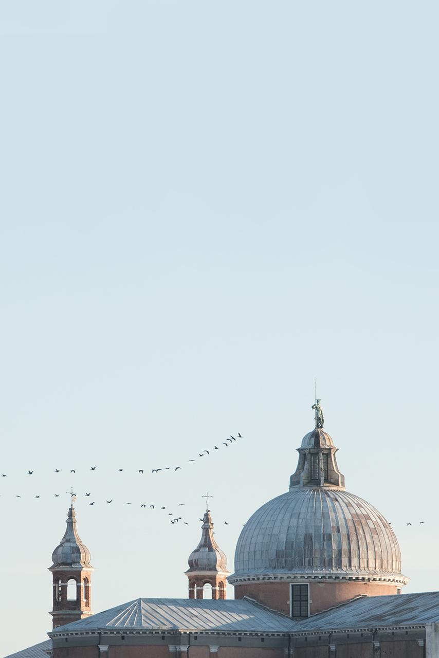 Venice © Renae Smith