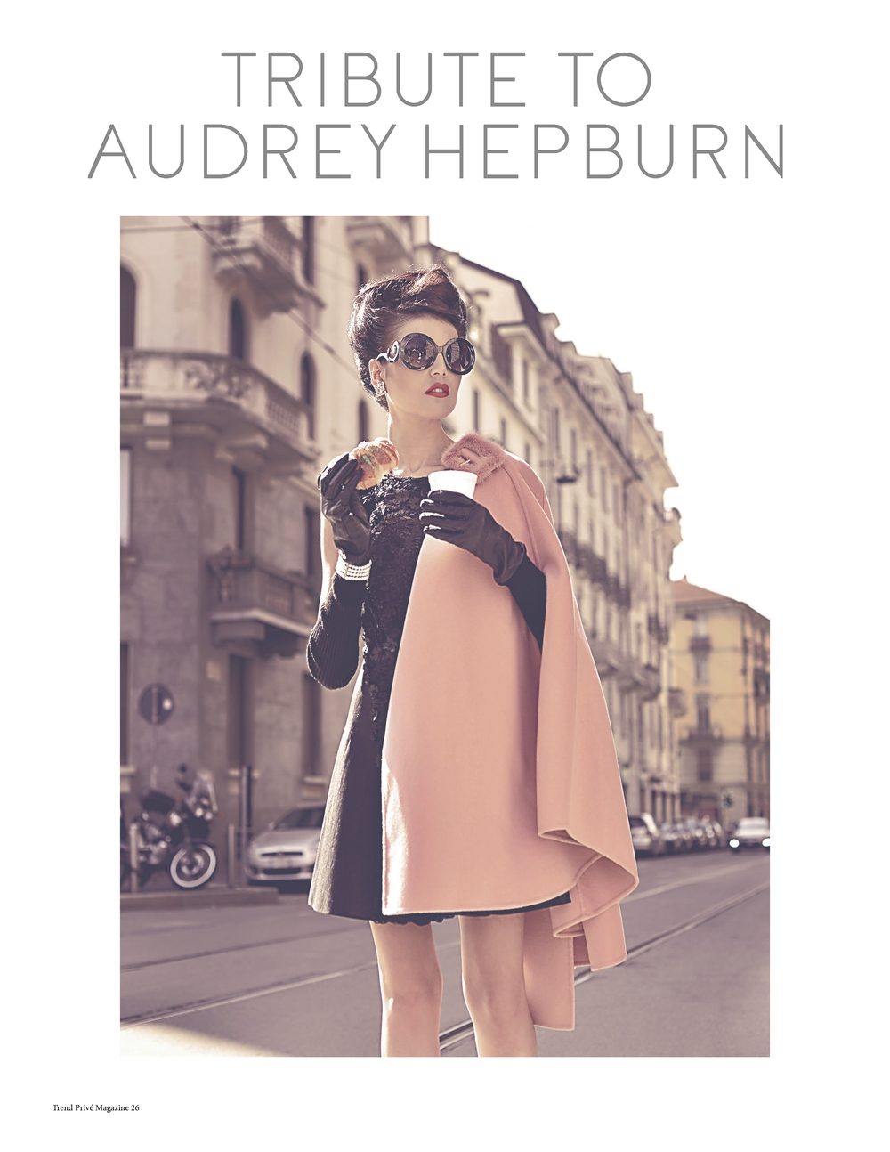 Tribute to Haudrey Hepburn (3).jpg