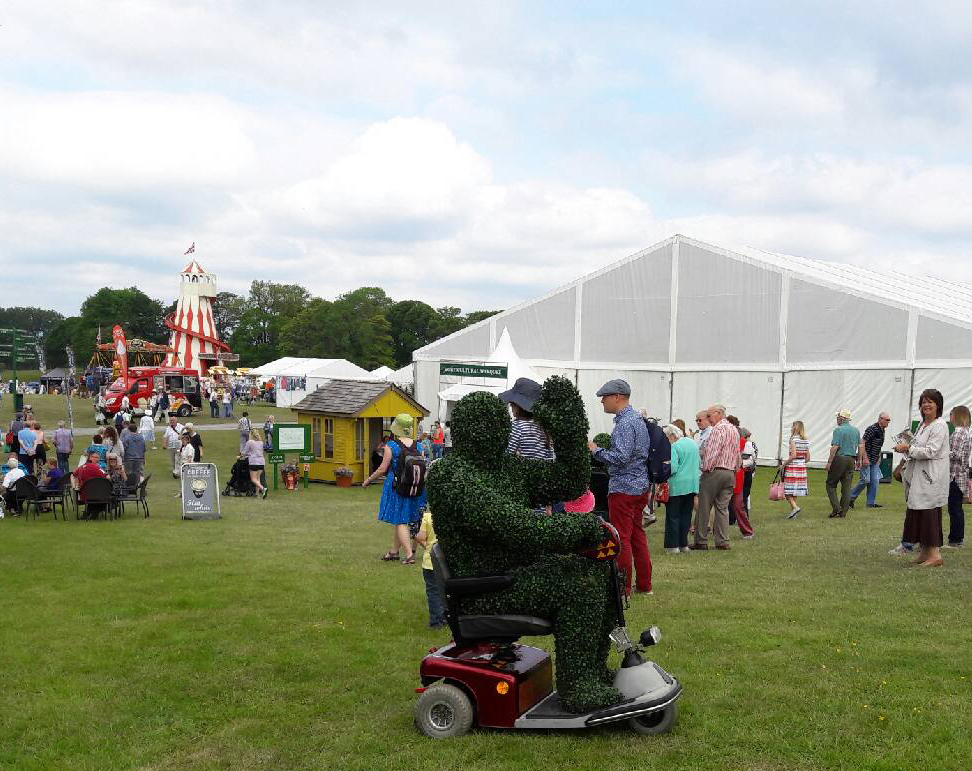 Holker Garden Festival Wave  A June 16.jpg