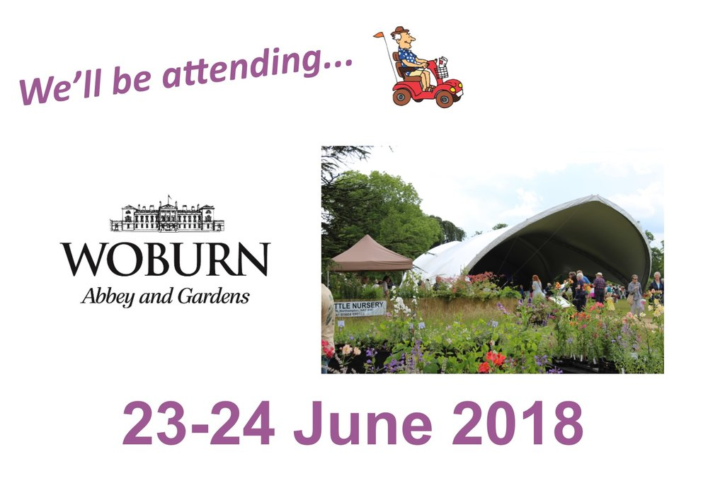 Latest Events Banner -  Woburn.jpg