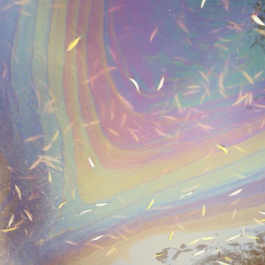 oljeregnbue2.jpg