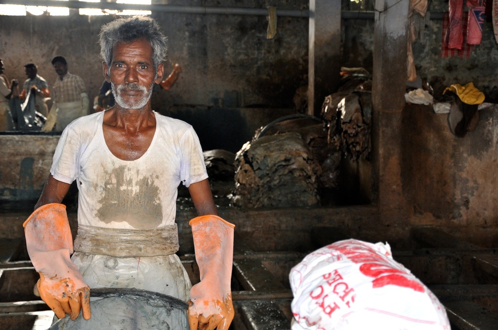 The Ecologist (2012): Toxic chemicals used for leather production poisoning India's tannery