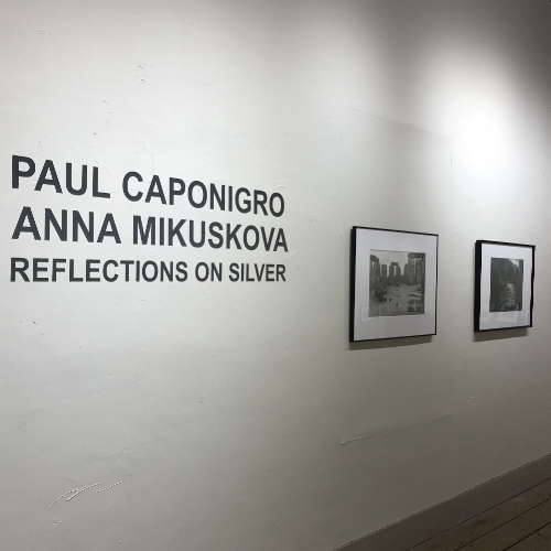 Reflections on Silver2.jpg