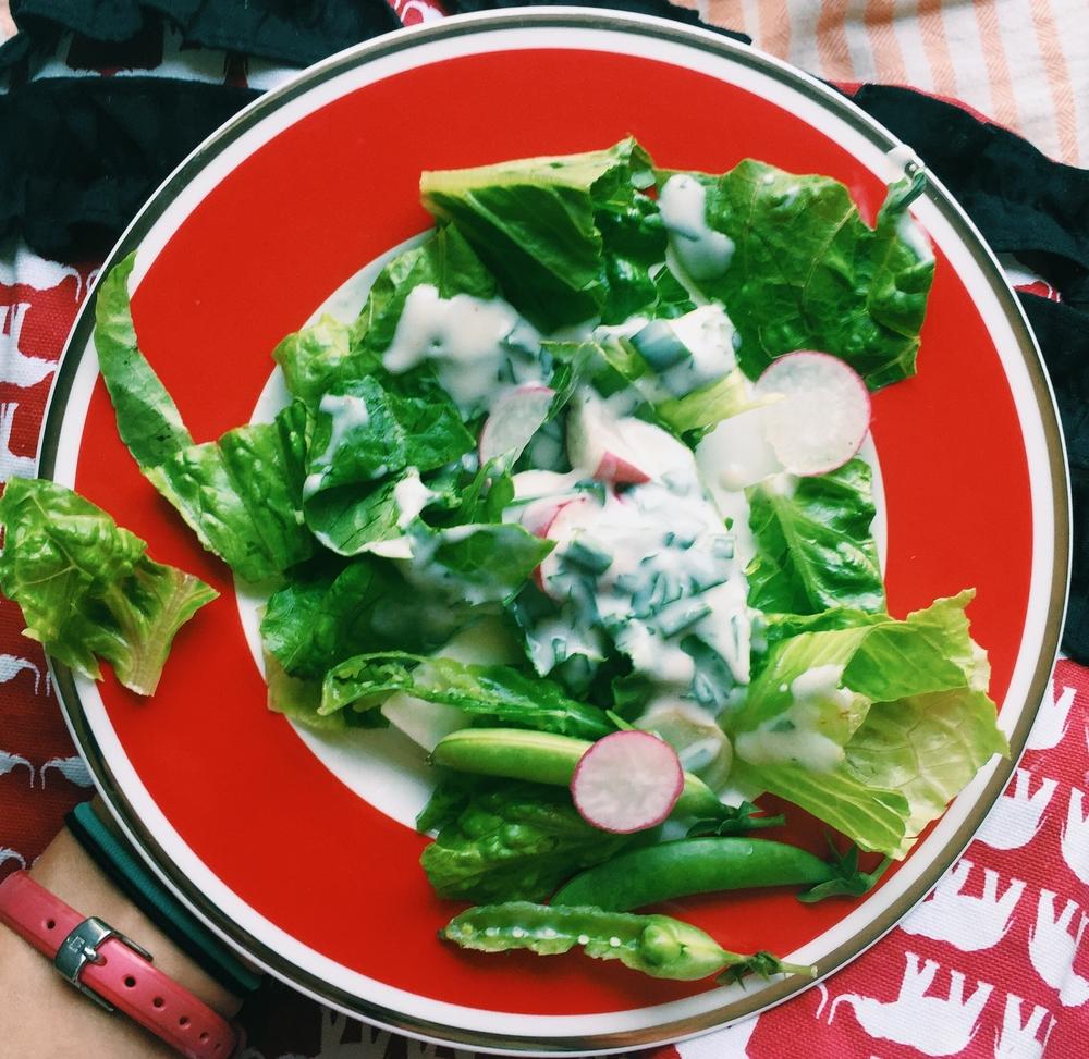 Butter Lettuce and Radish Salad