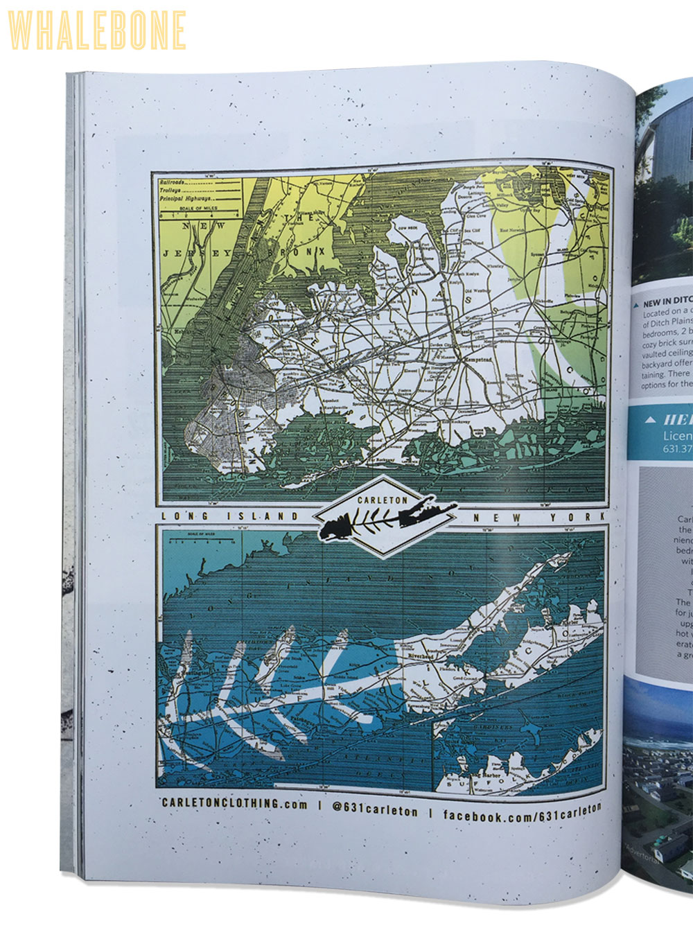 Carleton-Whalebone.jpg