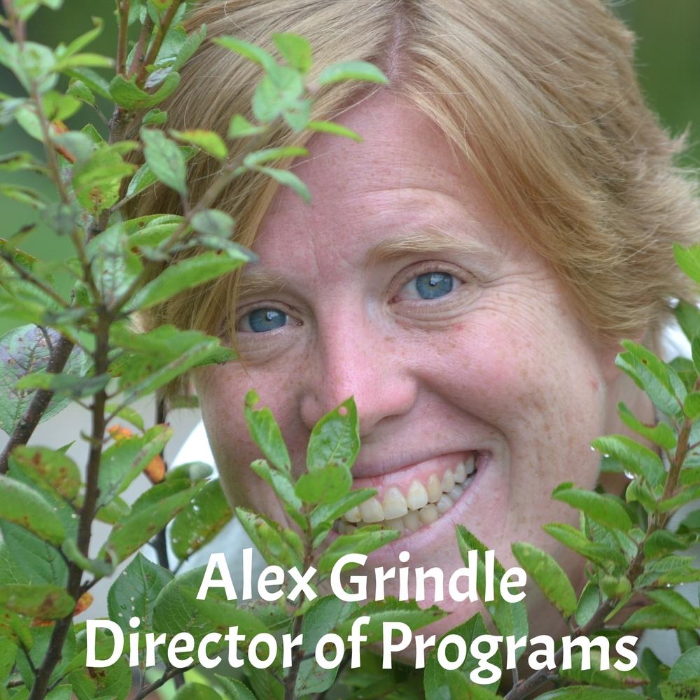 Alex Grindle