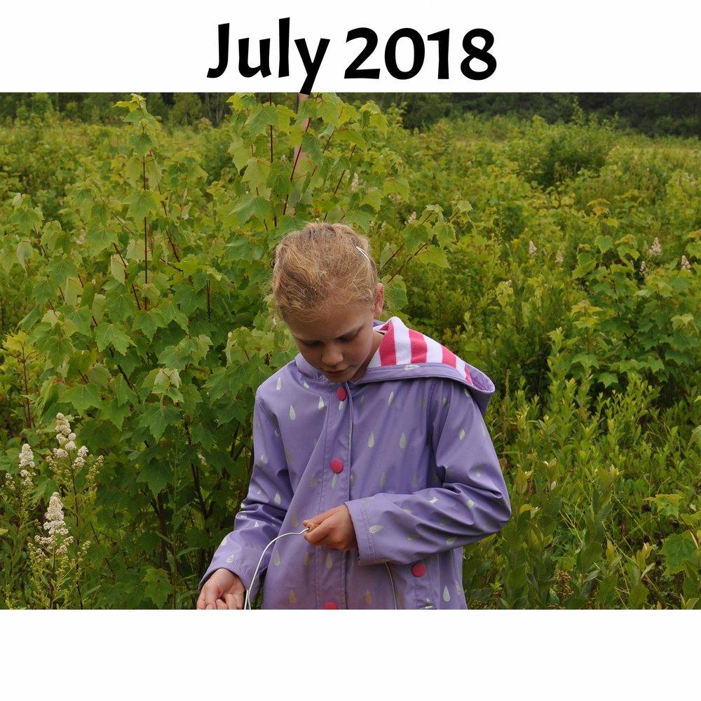 July 2018 Newsletter Icon.jpg