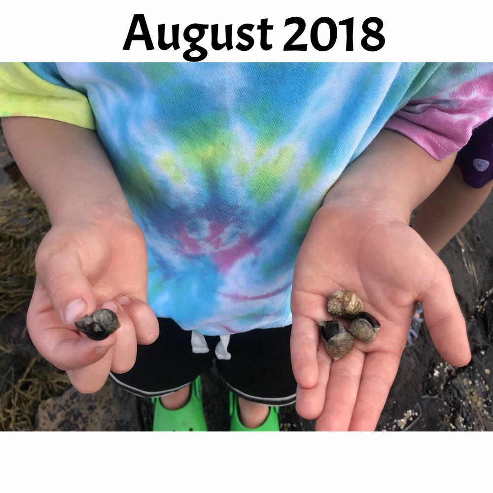 August Camp.jpg