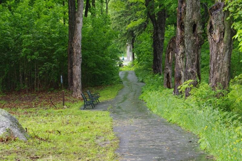 PS trails.jpg