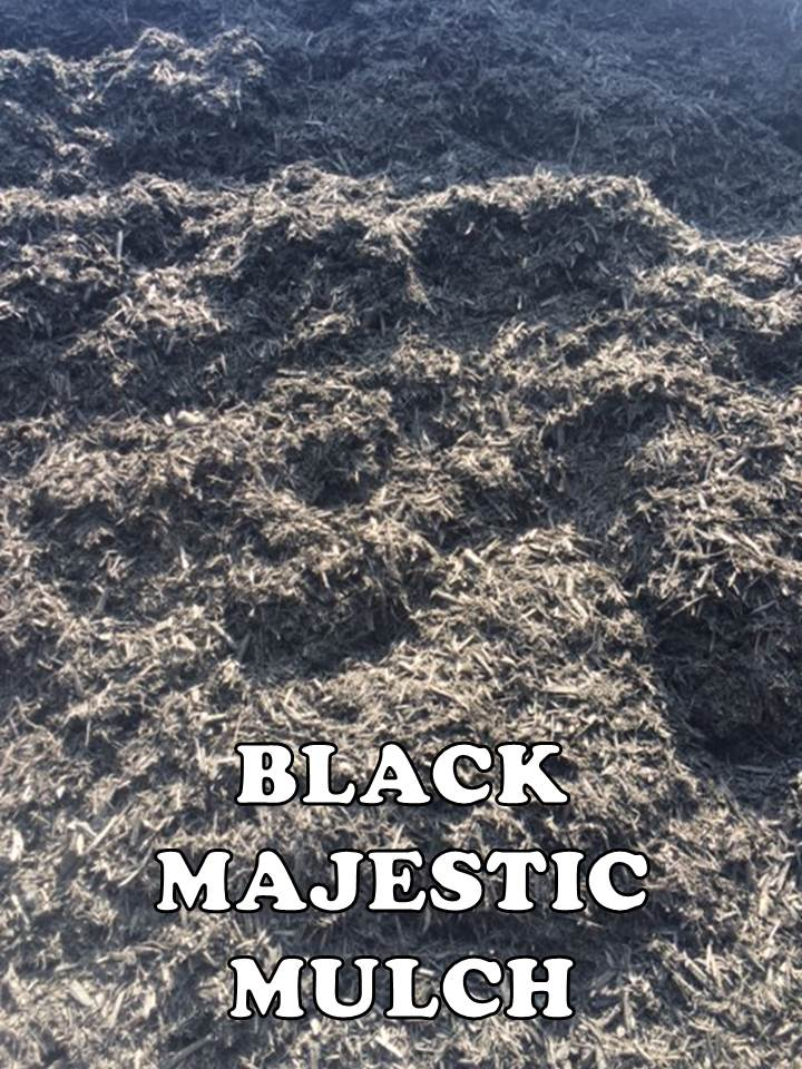 BULK BLACK MAJESTIC MULCH EDITED.jpg