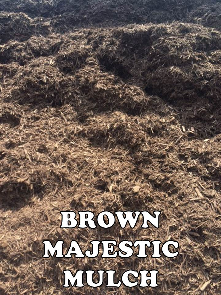 BULK BROWN MAJESTIC EDITED.jpg
