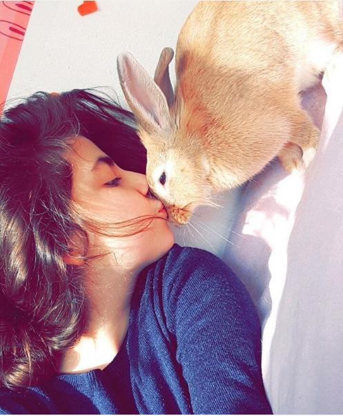 Kumral_Bunny.png