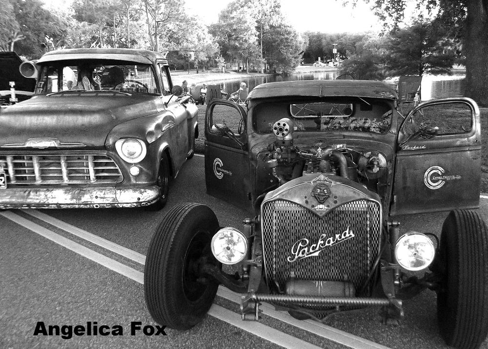 Angelica Fox 36.JPG