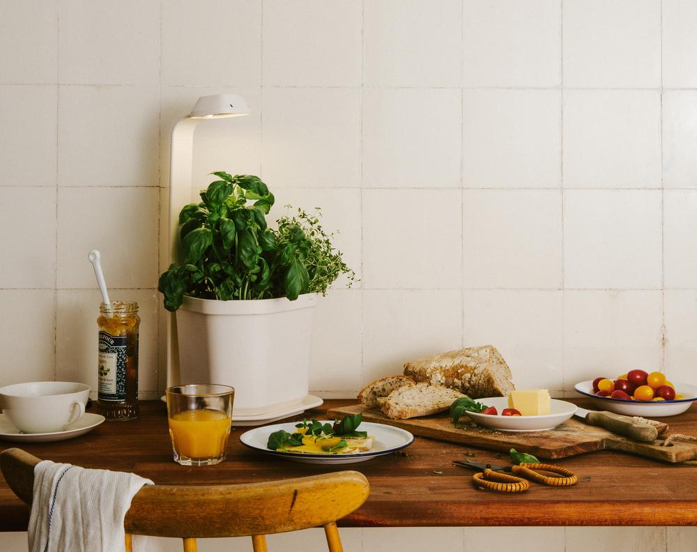 Tregren-Genie-Kitchen.jpeg