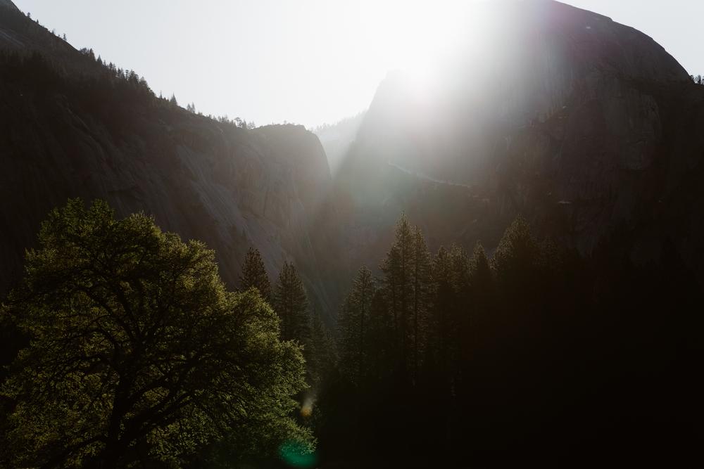 20160417_Yosemite_0675.jpg