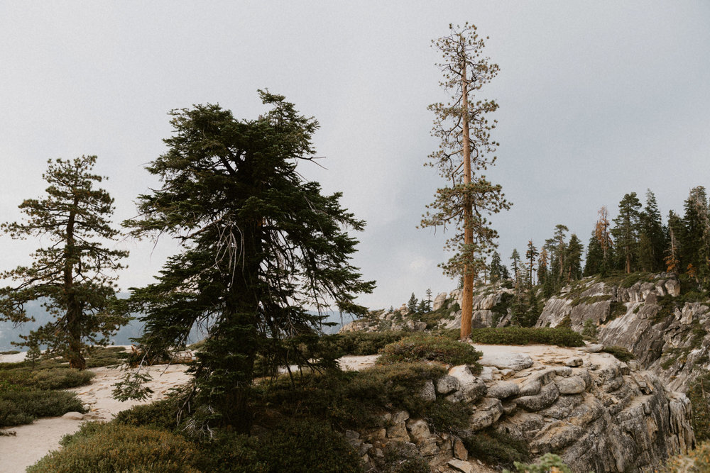 20160820_Yosemite_0001-Exposure.jpg