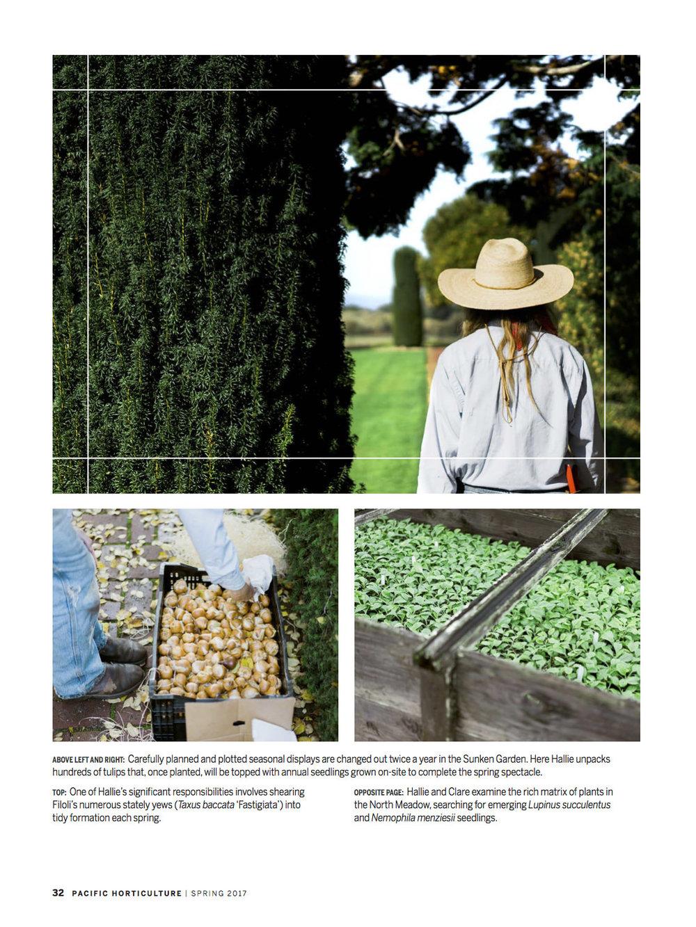 Filoli Working Gardener2.jpg