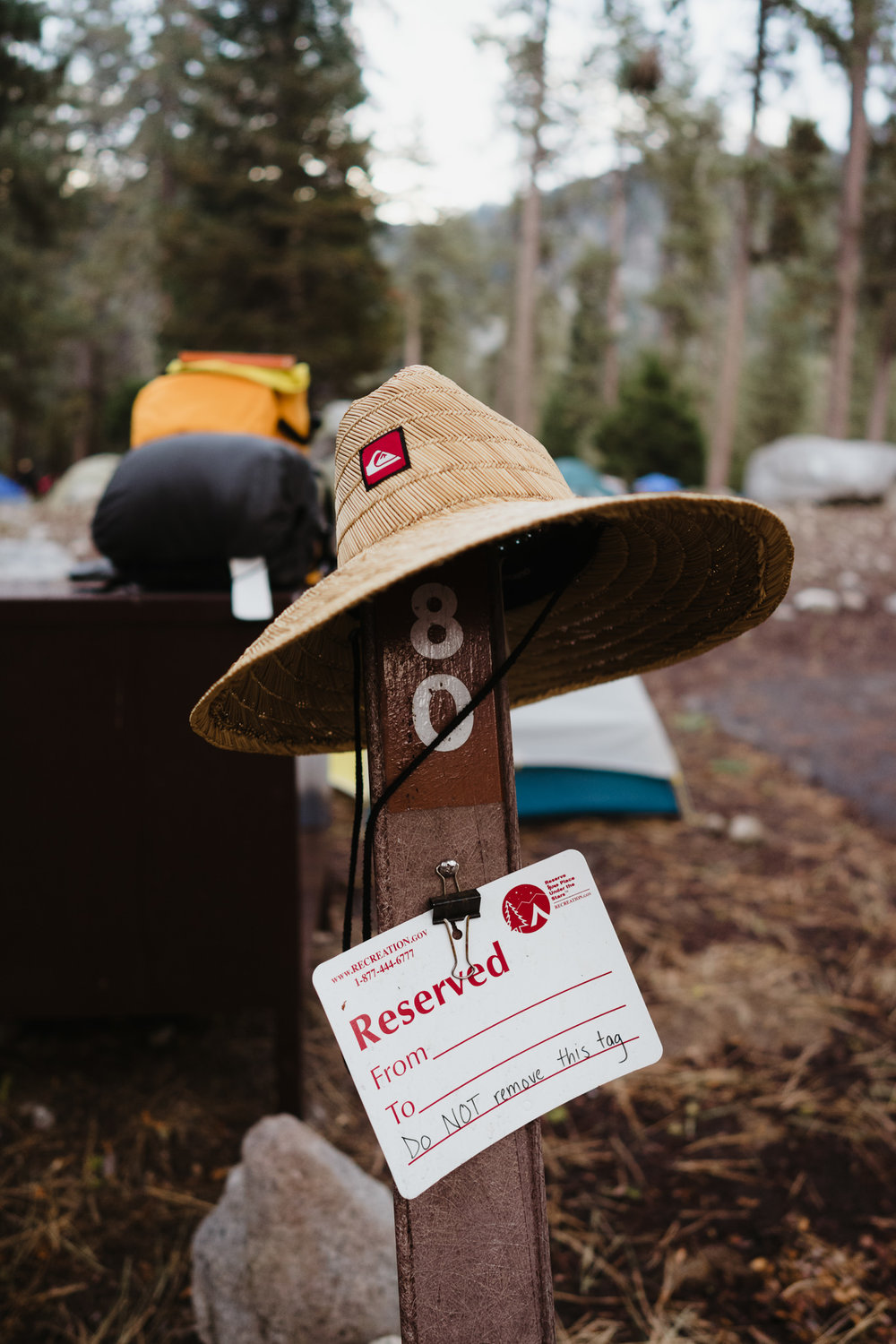 20170903-Shoestring-Adventures-Camping-Sequoia-38.jpg