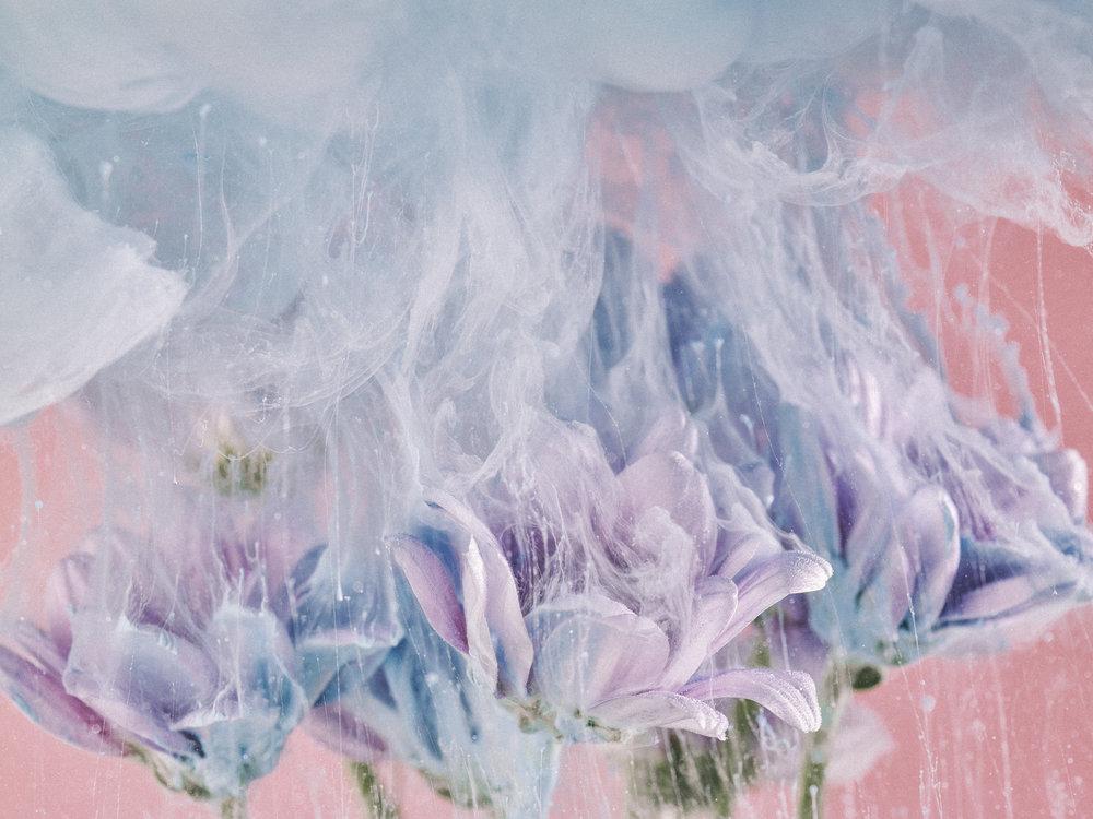 Flowers&Paint