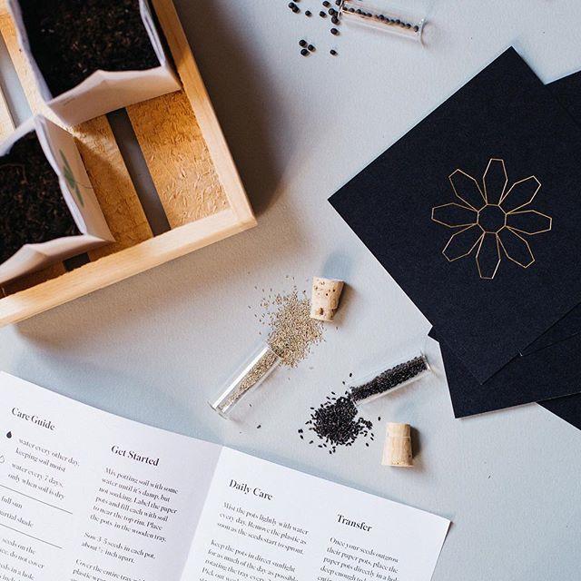 Let's start this Spring thing. . . . #seeds #plants #planting #seedstarting #garden #packagedesign #mothersdaygift #spring #windowsillgarden