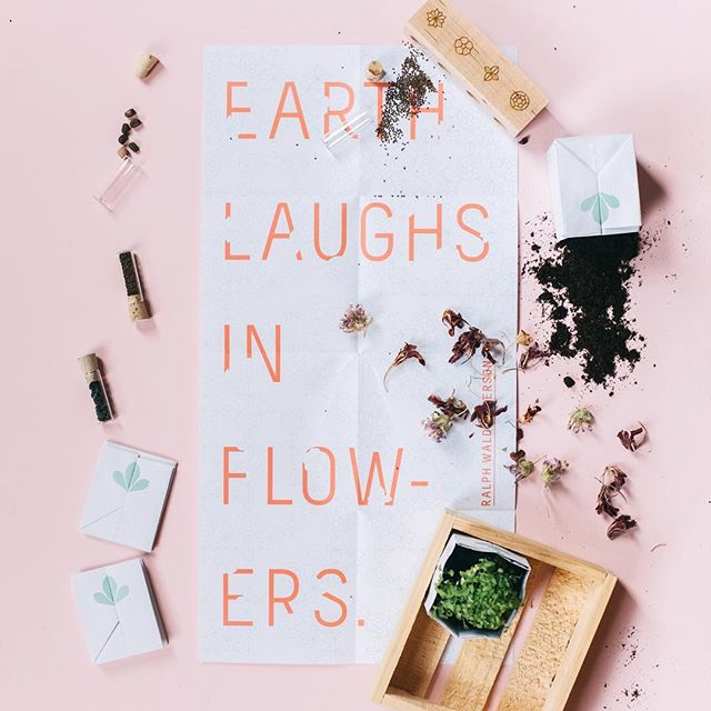 Are we laughing yet? . . . #edibleflowers #seedkit #seeds #gardening #gardenkit #mothersday #mothersdaygift #gift #spring #flowers #dsfloral