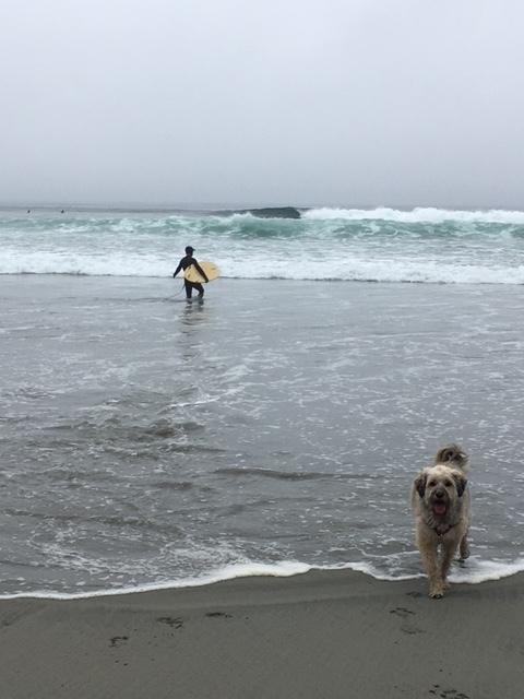 Tom-surf5.JPG