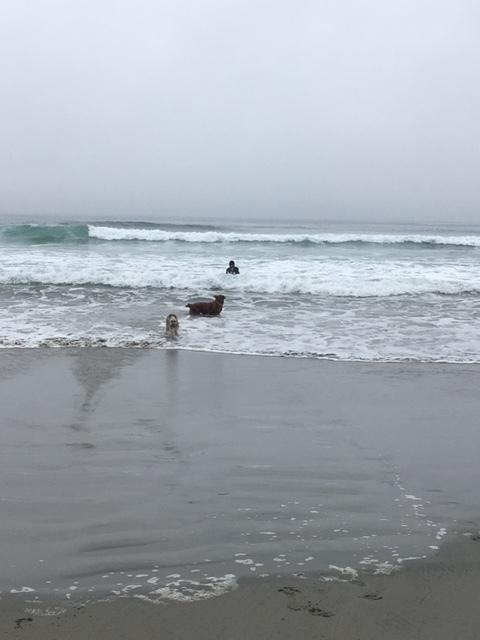 Tom-surf7.JPG