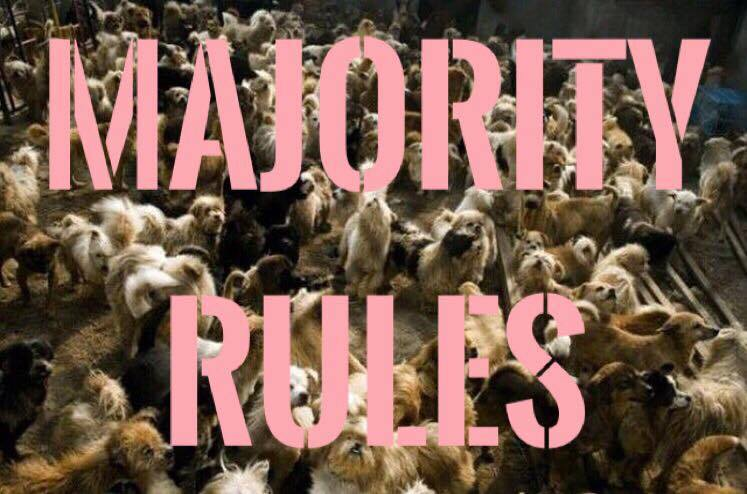 Majority Rules.jpg