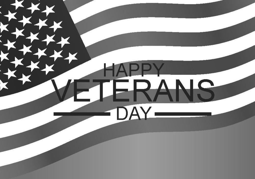 Veterans Day Flag Illustration