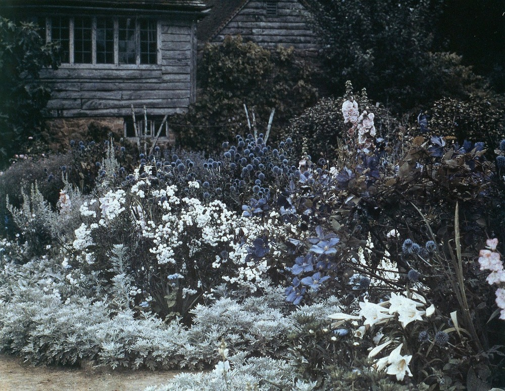 Munstead Wood Garden. Surrey, England. Gertrude Jekyll