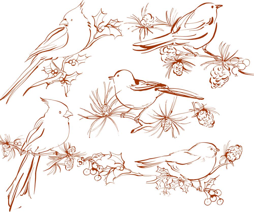 Woodland-Birds.jpg