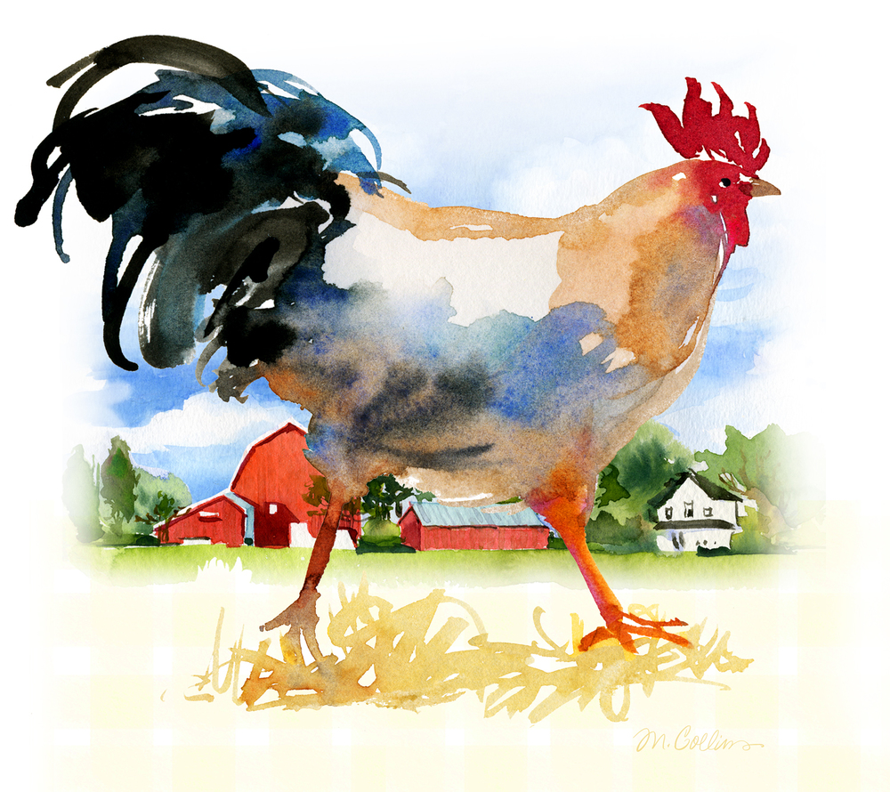 Farmland-Rooster-1.jpg