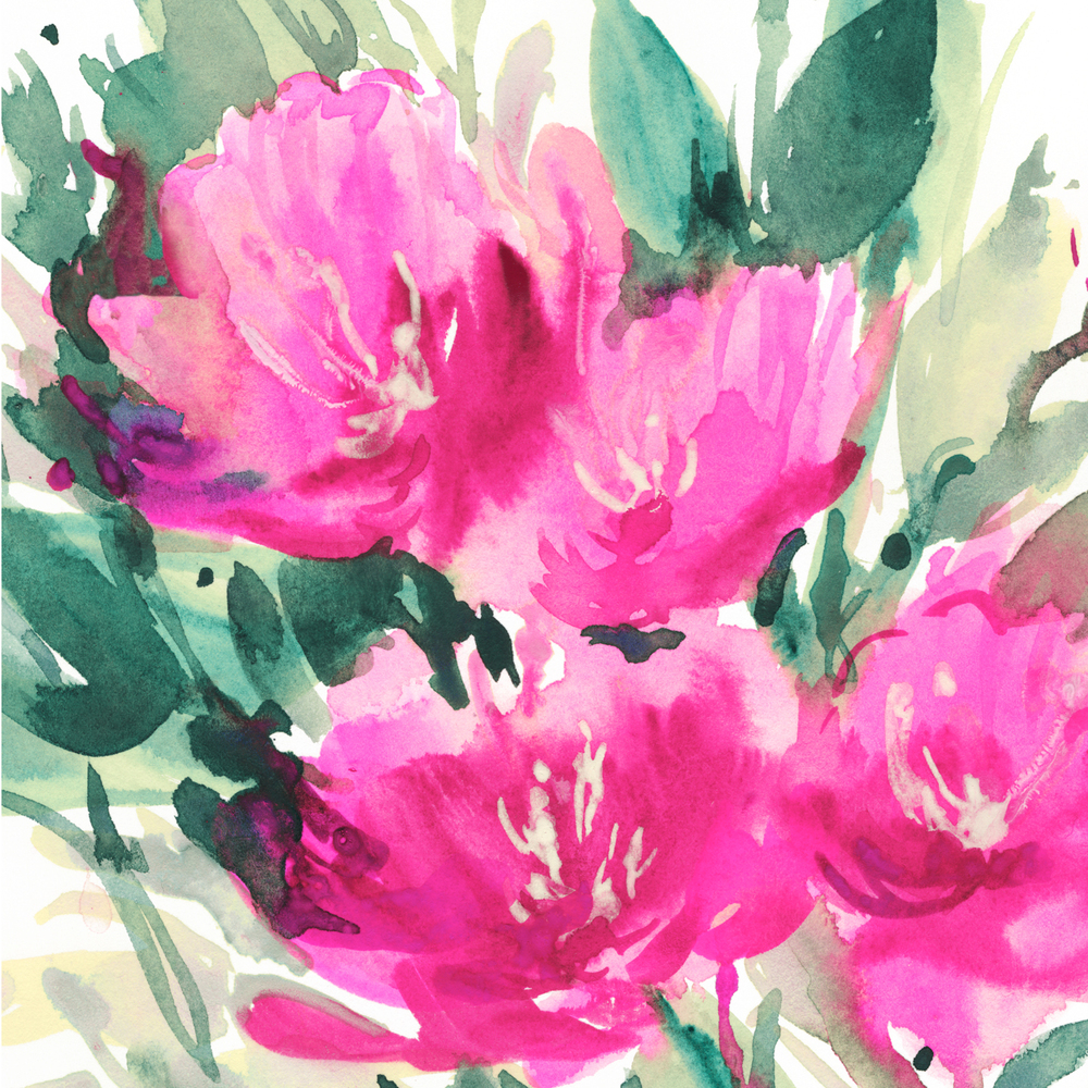 Pink-Tulips.jpg