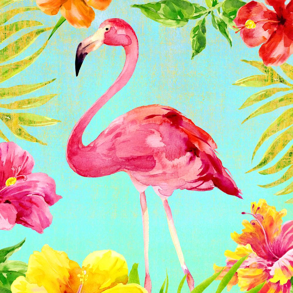 Hibiscus-Flmaingo-AQUA-1.jpg