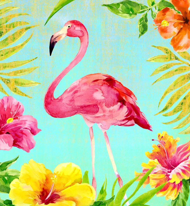Hibiscus-Flmaingo-AQUA-2.jpg