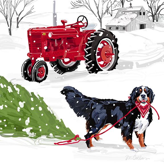 Red Tractor & Noah.jpg